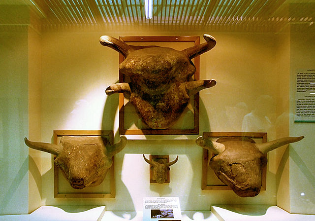 The Storm-God, represented by a bull; Museum of Anatolian Civilizations, Ankara